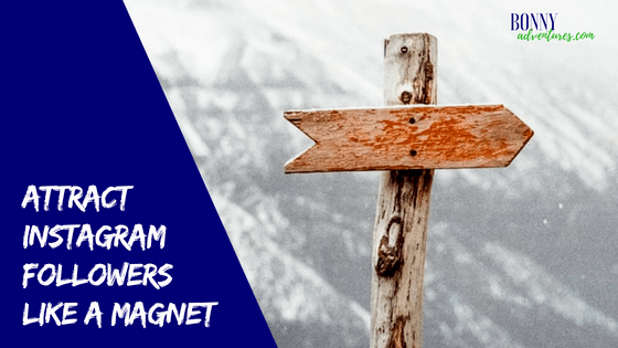 Attract Instagram Followers Like a Magnet